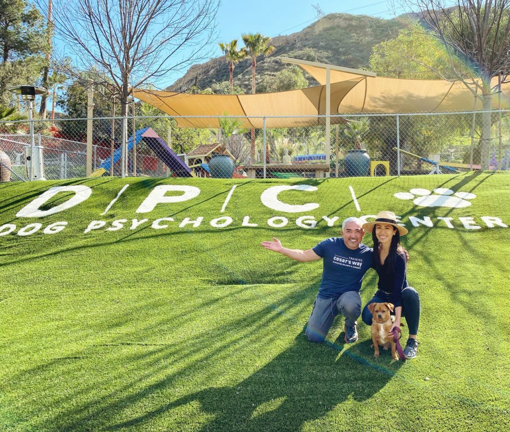 Cesar Millan and Christine Chang at The Dog Psychology Center